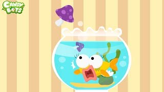 Candybots Animals - Animal in House (Cat, Dog, Mouse, Fish) - Apps for Kids