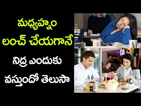 Do You Know Why Do We Get SLEEP After LUNCH? | Unknown Facts in Telugu | VTube Telugu