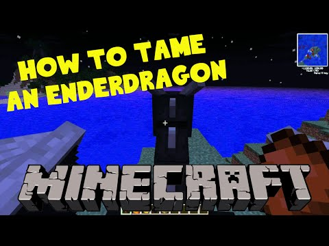 TAMING THE ENDERDRAGON IN MINECRAFT (no mods)