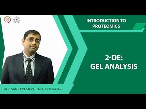 2 DE Gel analysis