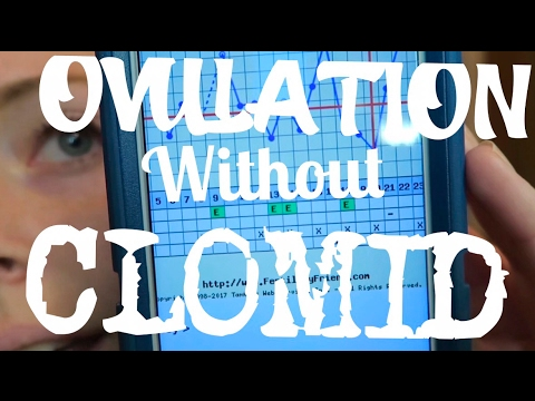 GUESS WHAT!!! | FIRST OVULATION WITHOUT CLOMID