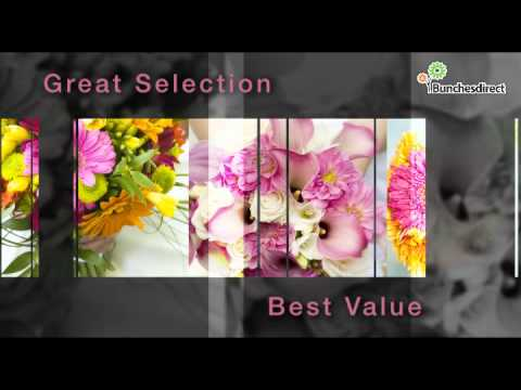 BunchesDirect | Your Complete Floral Solution | Wedding Flowers | Bulk Flowers