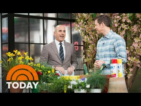 How To Spruce Up Your Garden And Make It Look Great All Year | TODAY