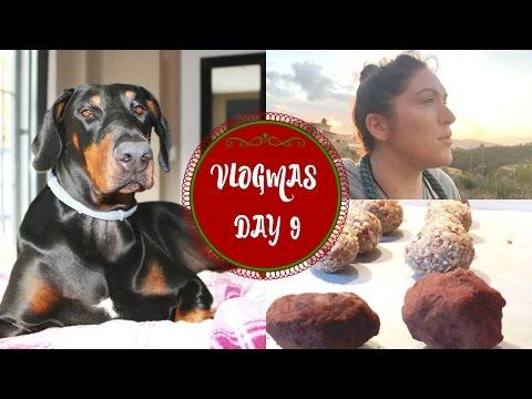 VLOGMAS 9th December | Running, Vivadogs Unboxing & Protein Balls