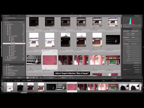 How to Quickly Add Photographs to a Collection in Lightroom