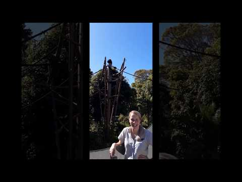 Why I love Auckland Zoo  - Primate keeper Sarah