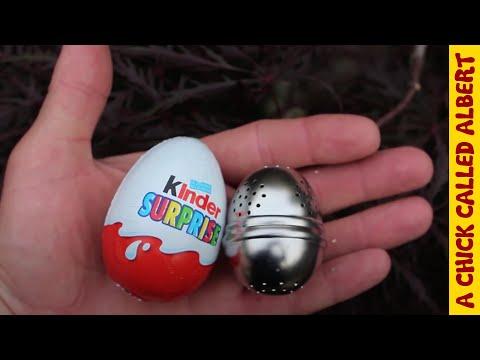 Egg hatches twice