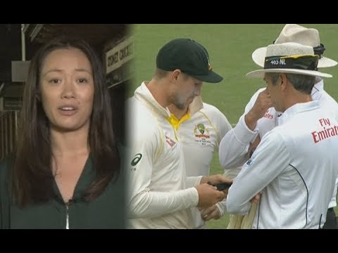 'Australians united in their condemnation & anger' over Steve Smith & cricket team