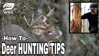 How To Become A Better Deer Hunter
