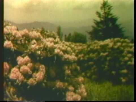 Air Pollution 1967 HEW