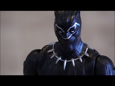 Black Panther and a Cat