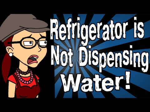 My Refrigerator is Not Dispensing Water!