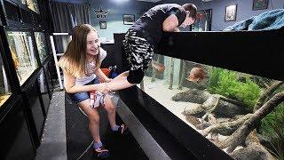 My Kids React To My Aquariums!   The King Of Diy