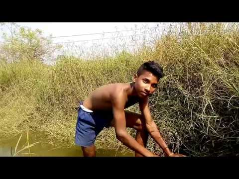 Xxx Mp4 New Adivasi Ho Munda Comedy Video 3gp Sex
