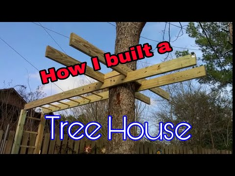 Tree house project 1