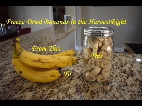 HARVEST RIGHT FREEZE DRYER--6 Lbs. of Bananas...Nature's Candy in the Harvest Right