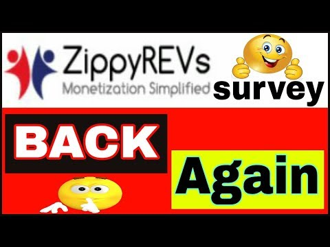 Zippyrevs Survey Back Again 2017 [HINDI]