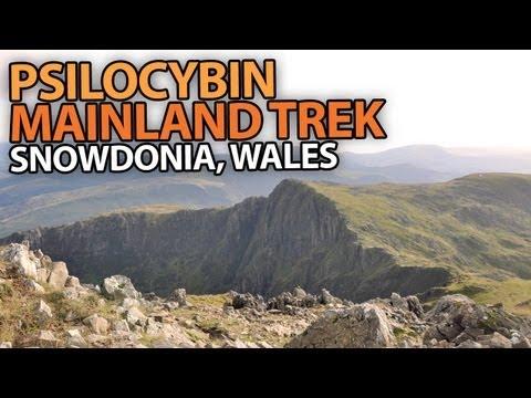Psilocybin Mainland Trek | Snowdonia, Wales