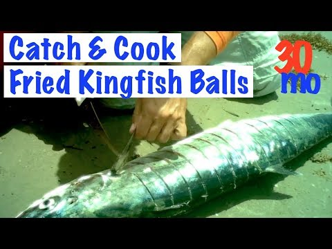 CATCH & COOK - FRIED KINGFISH BALLS - King Mackerel
