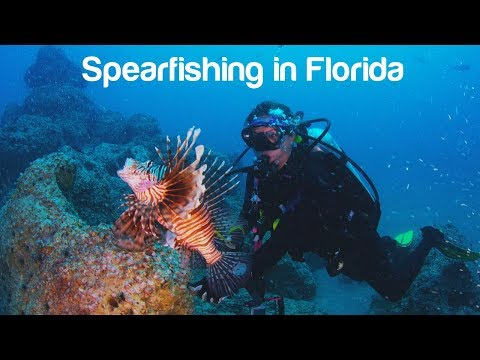How to Do Florida: Spearfishing for Snapper and Lionfish in Naples