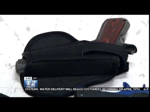 Concealed Carry Law Goes to Idaho Governor