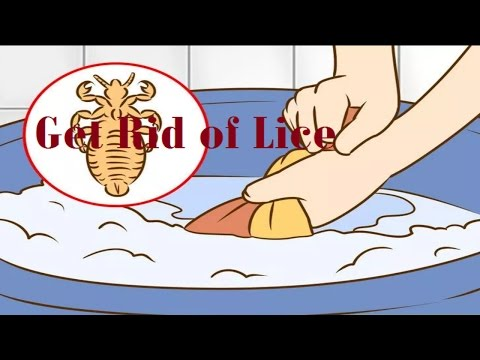 Get Rid of Lice | How to Get Rid of Lice