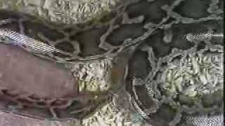 Rescue 911: Boy vs  Gasoline Volcano - PakVim net HD Vdieos