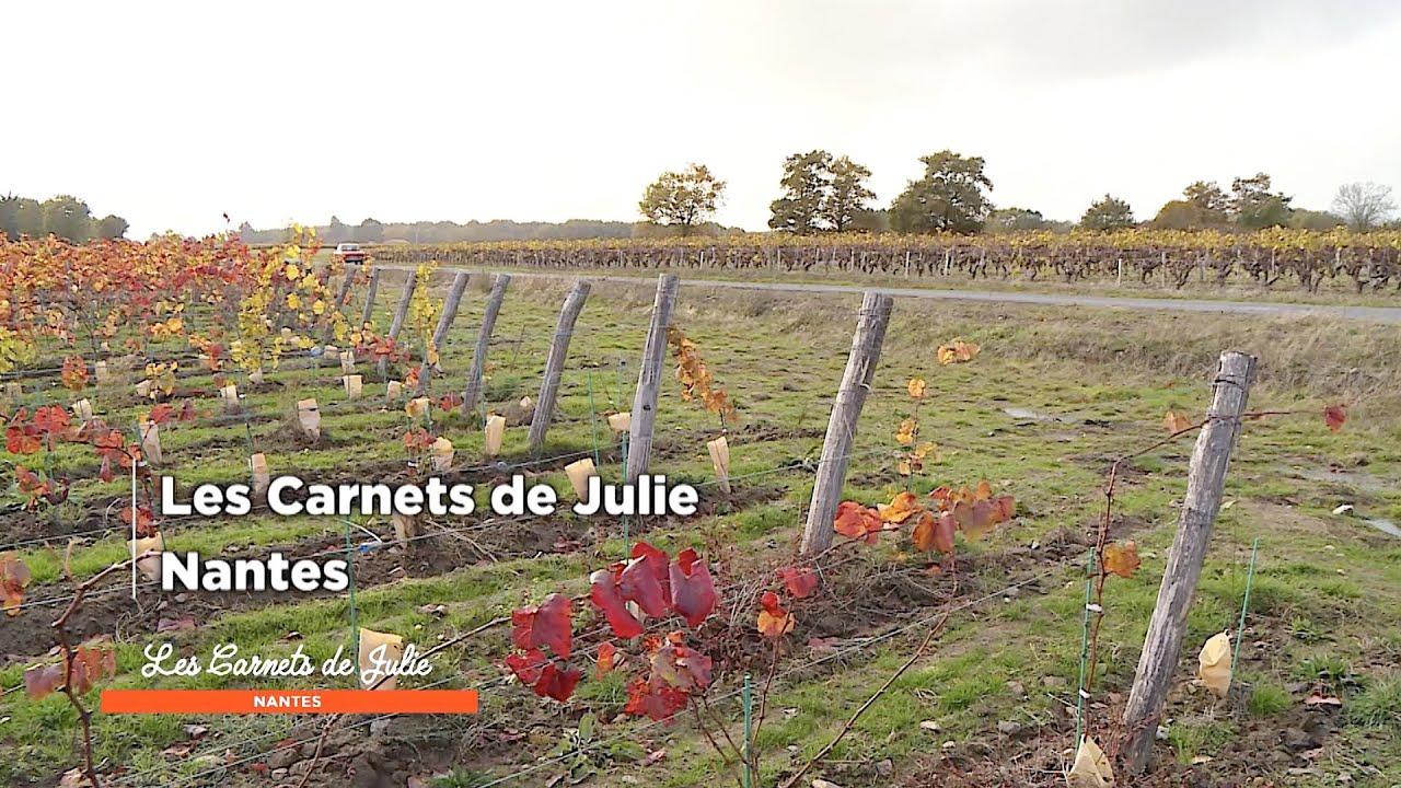 Nantes - Les Carnets de Julie