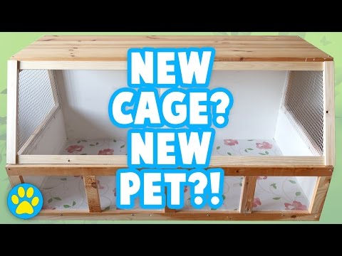 DIY Wood Hamster Cage (1069sq inches) | Part 1/3