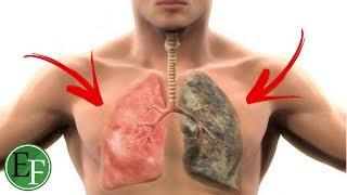 طريقة علمية لتنظيف الرئتين من اثار التدخين حتى لو استمريت بالتدخين