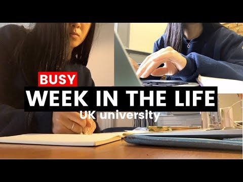 A BUSY WEEK IN THE LIFE OF A UNIVERSITY STUDENT | viola helen