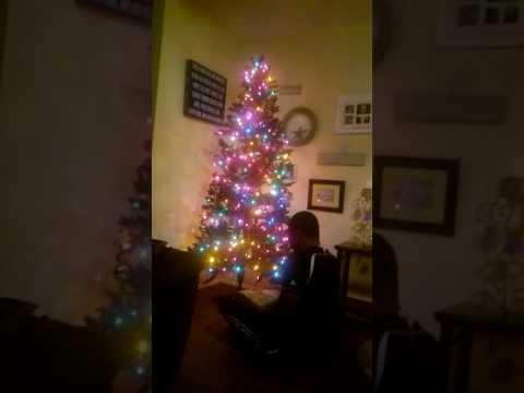 Make the tree taller she said!!!!