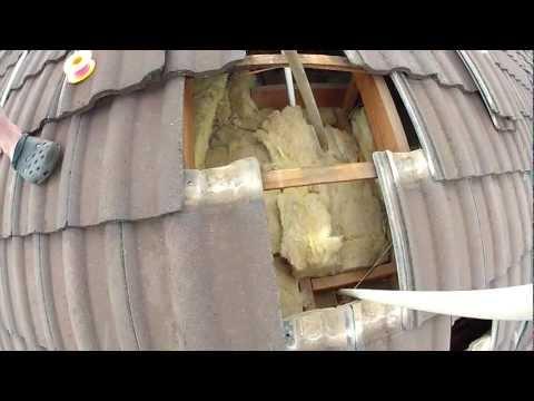 Eastern Brown Snake living inside a house roof