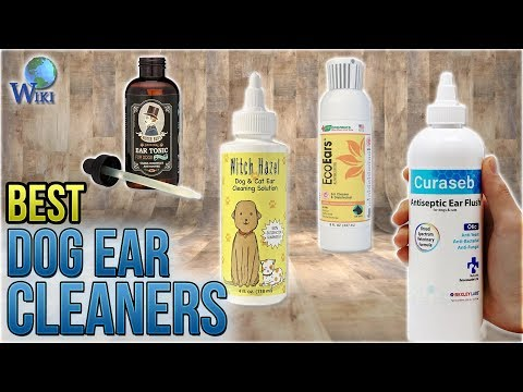 8 Best Dog Ear Cleaners 2018