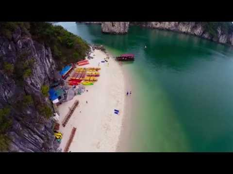 End of Graduate School Party in Halong Bay| Dragon Legend Cruise