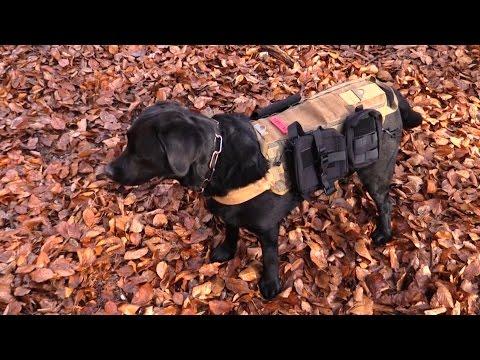 Survival Rucksack For Your Dog (Onetigris)