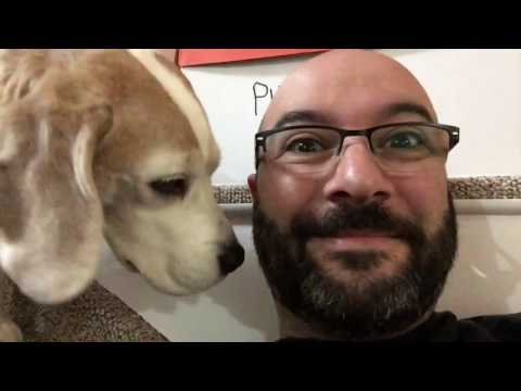 Cute Dog Alert, Easter Weekend and Mayor Charlie. Video Diary 17-16