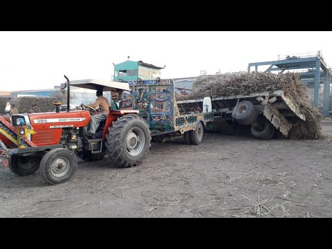 [Accident] Massey 385 & Belarus 510 Help to Recover Sugarcane Trolley