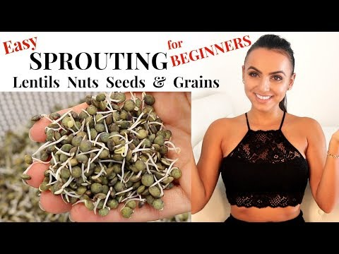 How to EASILY SPROUT Lentils, Nuts & Seeds at Home | Growing Sprouts for Beginners | Tyler Health