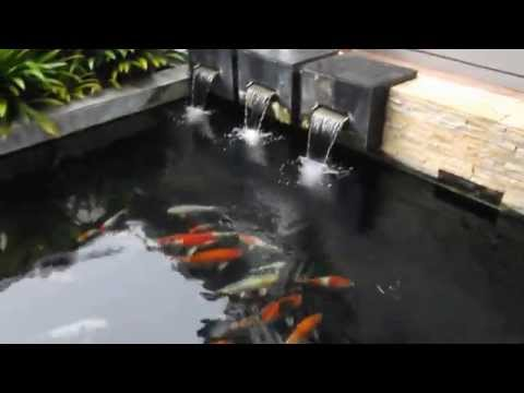 Clean & Clear Water Koi Pond 4ft Depth by Aurapond