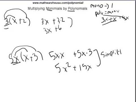 How to Multiply Monomials by Polynomials
