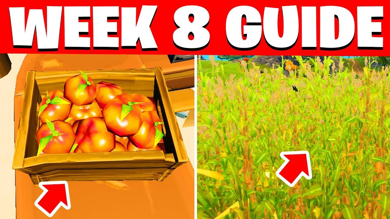 ALL WEEK 8 CHALLENGES FORTNITE SEASON 5 ( WEEK 8 CHALLENGES / EPIC QUESTS )