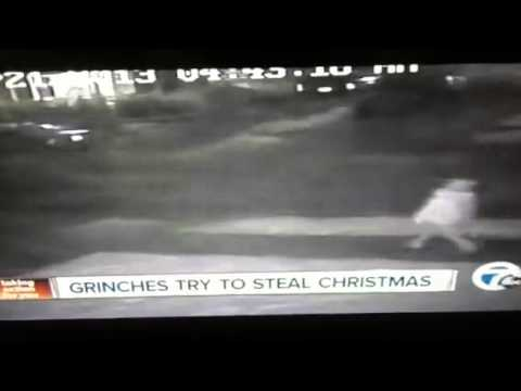 The grinch who stole christmas (decorations)