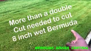 By Bermuda Gr Central Cutting Wet