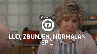 Šefika uvodi red u kuću Fazlinovića - Lud zbunjen normalan - epizoda 1