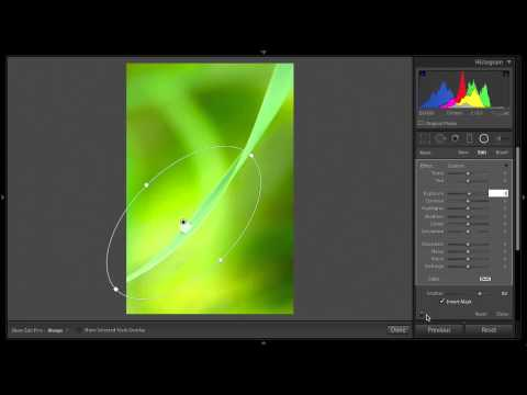 3 tips for Enhancing Your Images with the Radial Filter in Lightroom