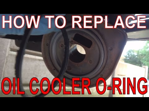 How to Fix the dreaded Renault Scenic Oil Cooler Leak! Replace O-ring Washer Seal.