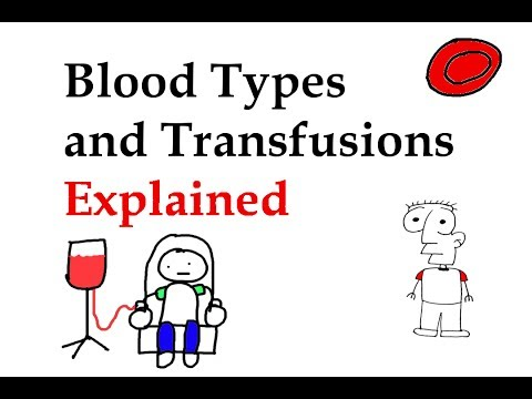 Blood Types and Transfusions Explained