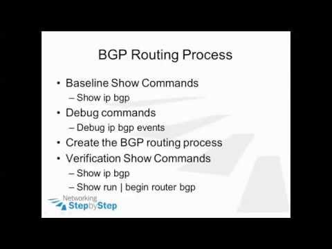 Cisco Network CCNP BGP - Routing Process