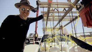 The Octopus Is Dead | MythBusters